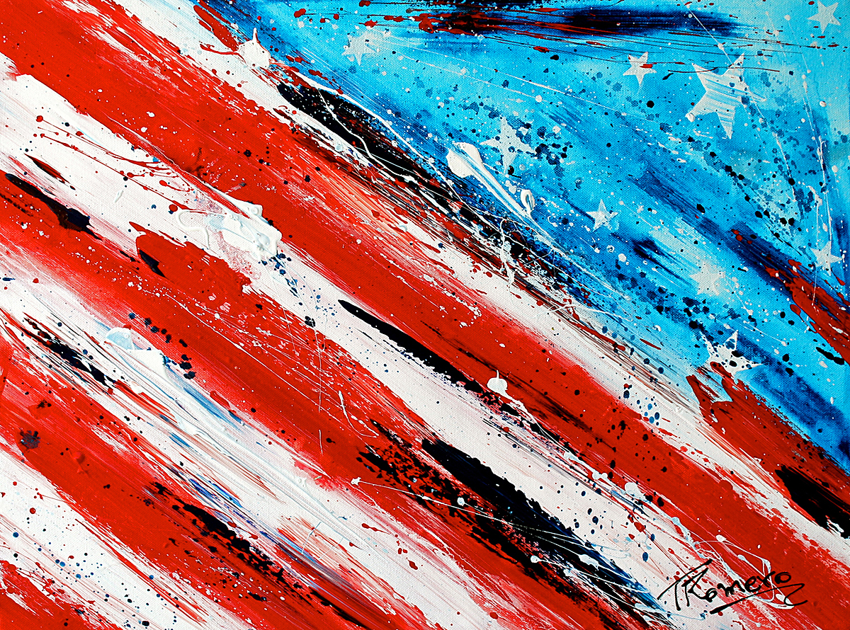 TR 41 – American Flag 6
