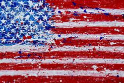 TR 85 – American Flag 19