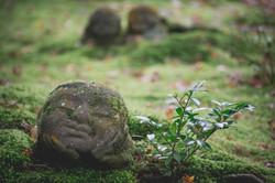 San_Zen_In_Fall_Leaves_Kyoto-148