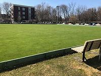 green reveal for april 21.jpg