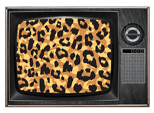 leopard tv.png