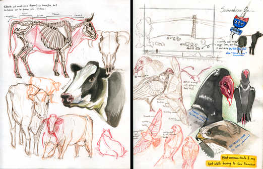 Sketchbook Compilation2.jpg