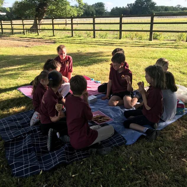 Pony & pizza care picnic