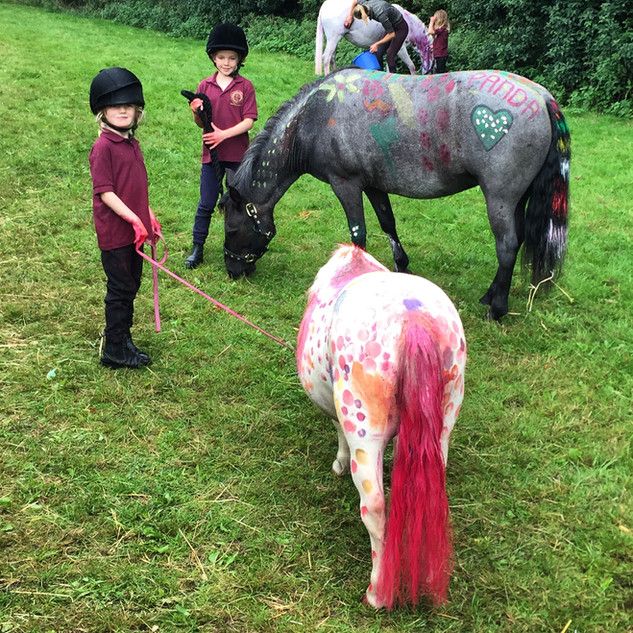Paint a pony day