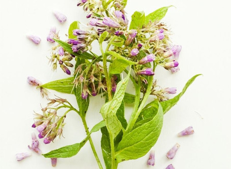 Allantoin -  An Ingredient that's good for all skin types.
