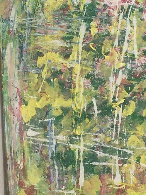 Fenêtre aux Mimosas