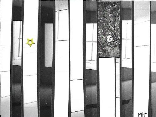 Collage argentique et numérique #5
