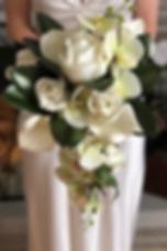 Magnolia1_edited_edited.png