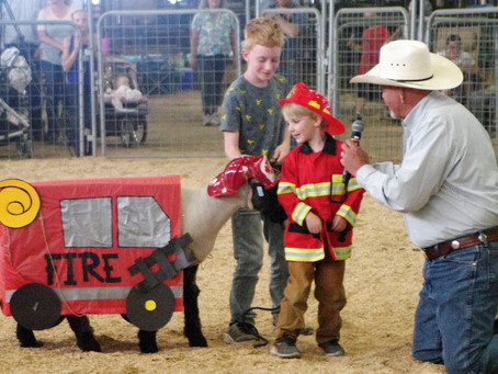 """BOX ELDER COUNTY FAIR - """"Pee-Wee Lamb Show is dressed up for success - and fun!"""""""