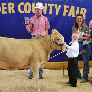 """BOX ELDER COUNTY FAIR - 2021 BEJL Bucket Calf Show: """"Grand Champion honors goes to Roy Pugsley!"""""""