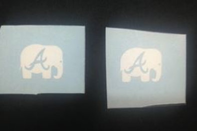 Elephant With Alabama A
