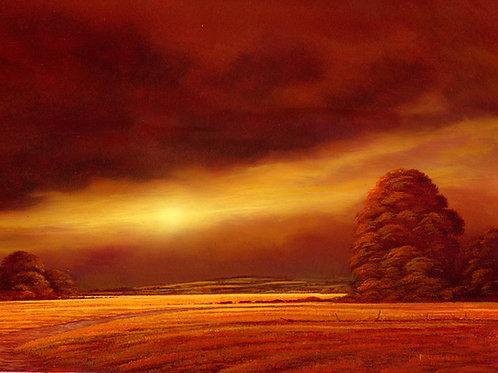 Autumns Blaze