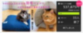 スクリーンショット 2020-01-13 23.18.07.jpg