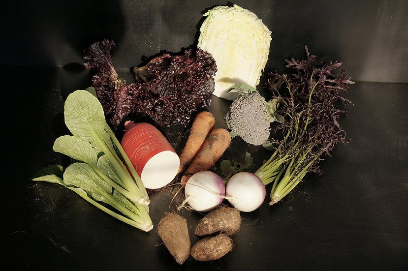 FAMFARM 有機野菜セット 季節の無農薬野菜 定期宅配 一人暮らし