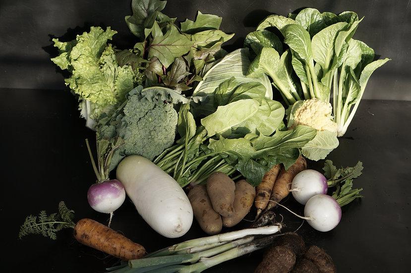 FAM FARM 有機野菜セット 定期宅配 一人暮らし