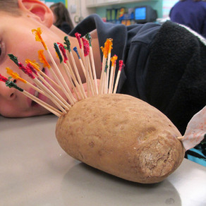 5 Easy Turkey Projects Meeting Common Core Objectives