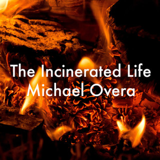 the incinerated life.jpg