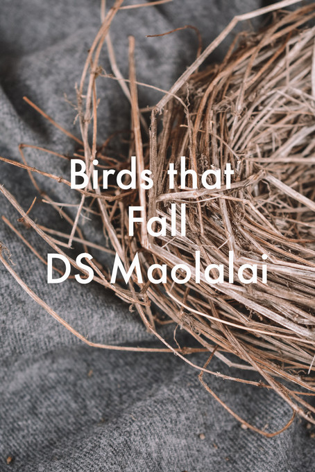 Birds that Fall by DS Maolalai
