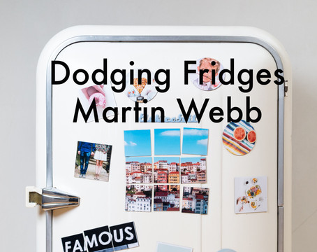 Dodging Fridges by Martin Webb