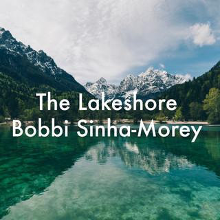 the lakeshore.jpg