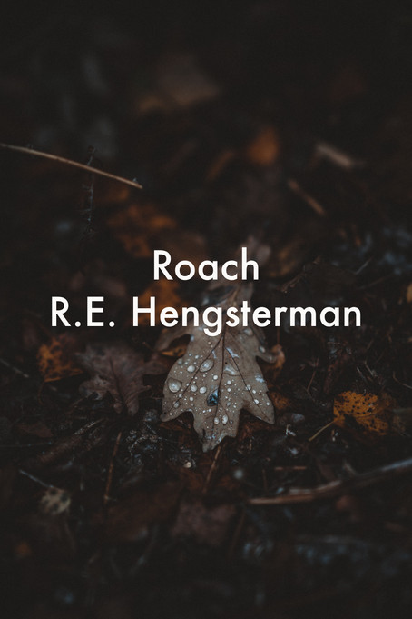 Roach by R.E. Hengsterman