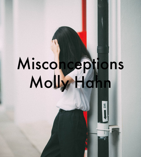 Misconceptions by Molly Hahn