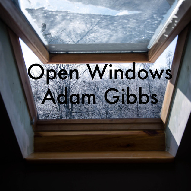 Open windows.jpg