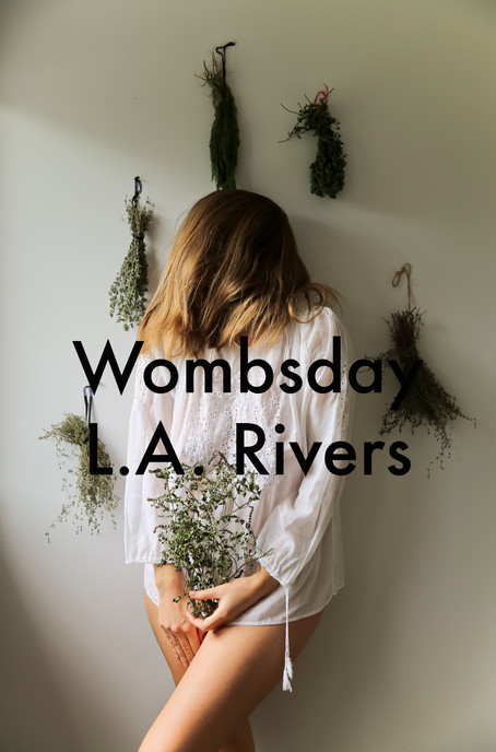 Wombsday by L.A. Rivers