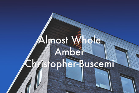 Almost Whole by Amber Christopher-Buscemi