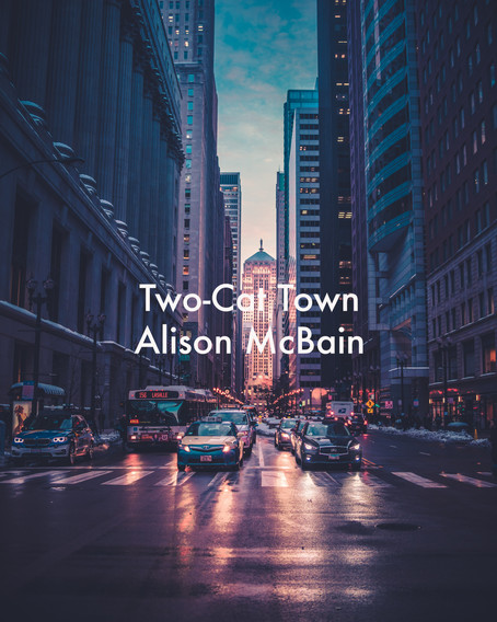 Two-Cat Town by Alison McBain