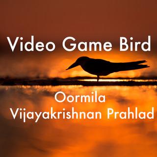 video game bird2.jpg