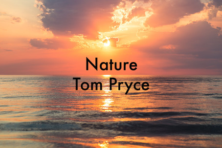 Nature by Tom Pryce