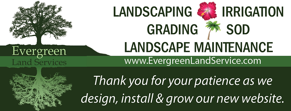 Evergreen LS Landing Page Graphic.png