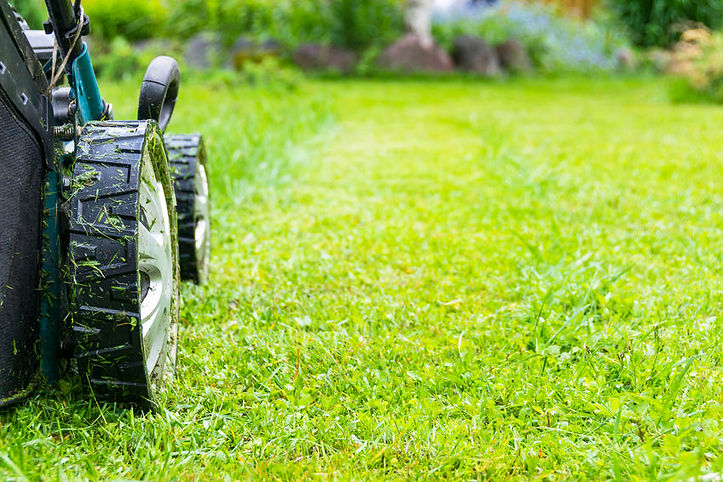 lawn-maintenance-evergreen-land-services