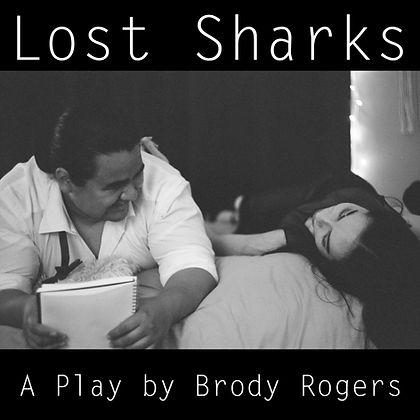 lost sharks insta graphic.jpeg