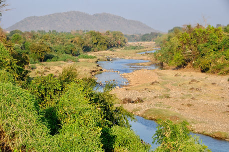 Birding along the Hiran River.jpeg