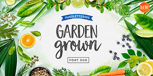 Cultivated Mind Display Fonts