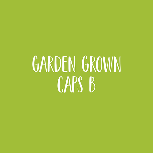 GARDEN GROWN | B CAPS FONT