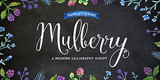 Mulberry Script_001.jpg