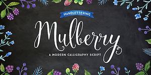 Mulberry Script Extras Font