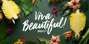 Cultivated Mind Brush Fonts