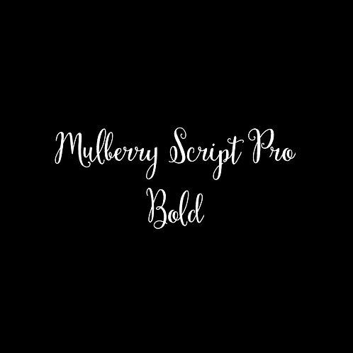 Mulberry Script Pro Bold Font - 1 User