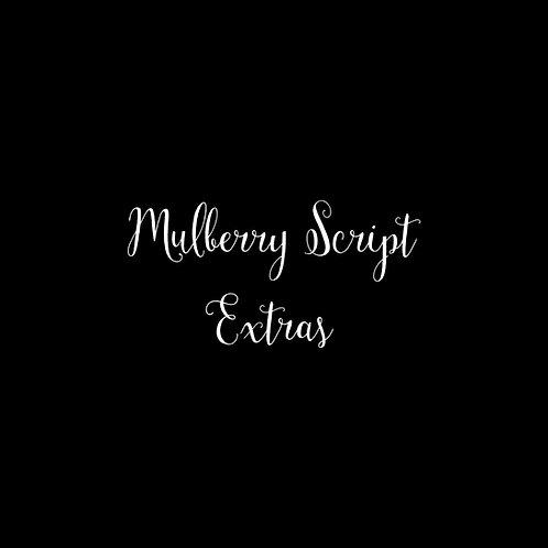 Mulberry Script Extras Font & Vector Art - 1 User