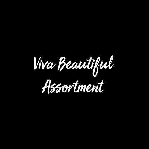 Viva Beautiful Font Assortment - 1 User