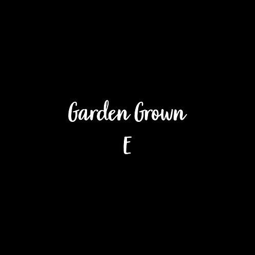 Garden Grown E Font - 1 User