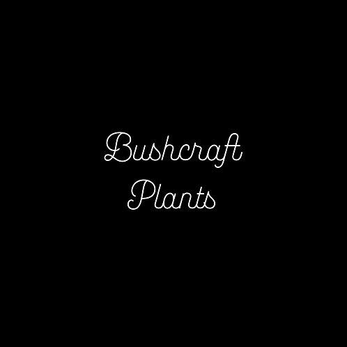 Bushcraft Plants Font & Vector Art - 1 User