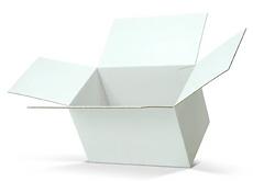 FOL box.PNG