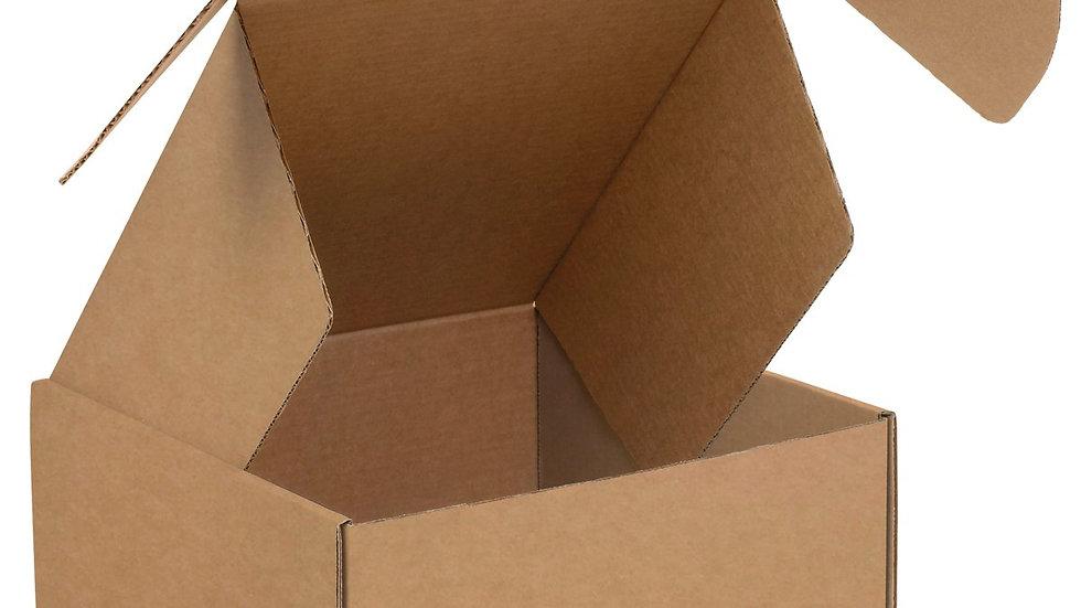 14 x 10 x 6 Shipping Box