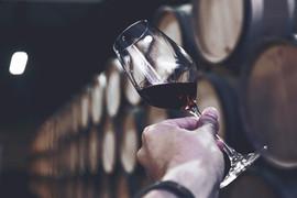 Domaine Bertagna Wine Tasting