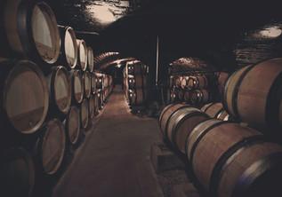 Domaine Bertagna Caveau Cellar